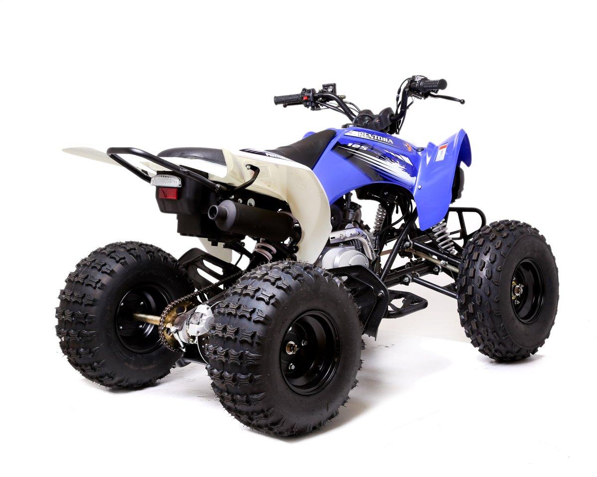 pentora 125cc petrol blue adult quad bike. Black Bedroom Furniture Sets. Home Design Ideas