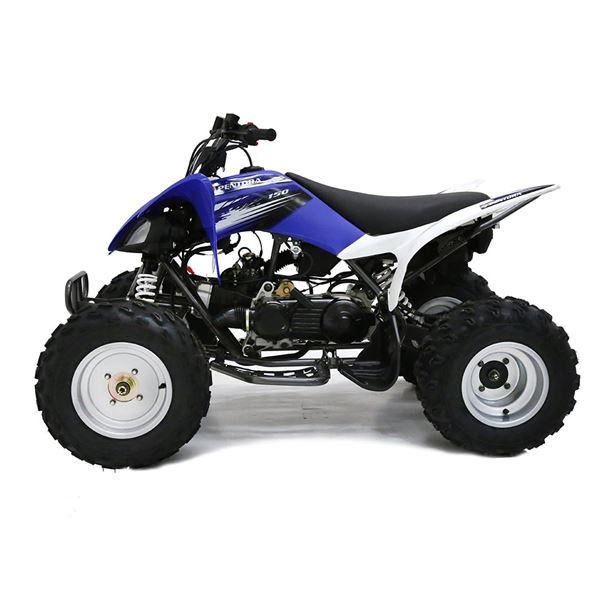 Pentora 150cc Blue Adult Quad Bike