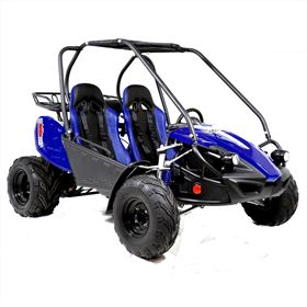 Funbikes GTS150 150cc Blue Super Sport Off Road Buggy
