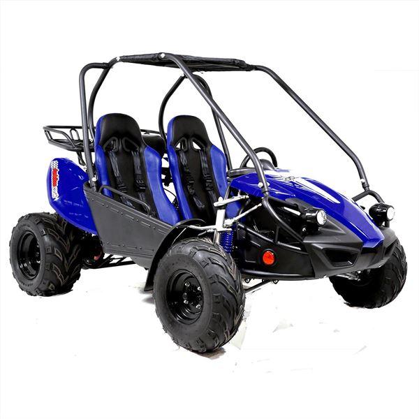 funbikes gts150 150cc petrol blue super sport off road buggy. Black Bedroom Furniture Sets. Home Design Ideas