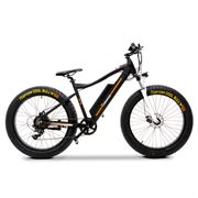 Enhance 48v 350w Electric Fat Tyre Mountain Bike E-Bike