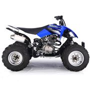 Pentora 250cc Blue Sports Adult Quad Bike